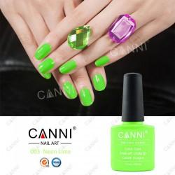 Neon Lime Geellakk
